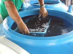 (写真)車の中の水槽にカゴを収容する